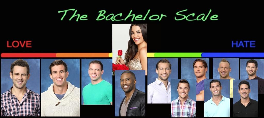 Andis-Bachelor-Scale 2