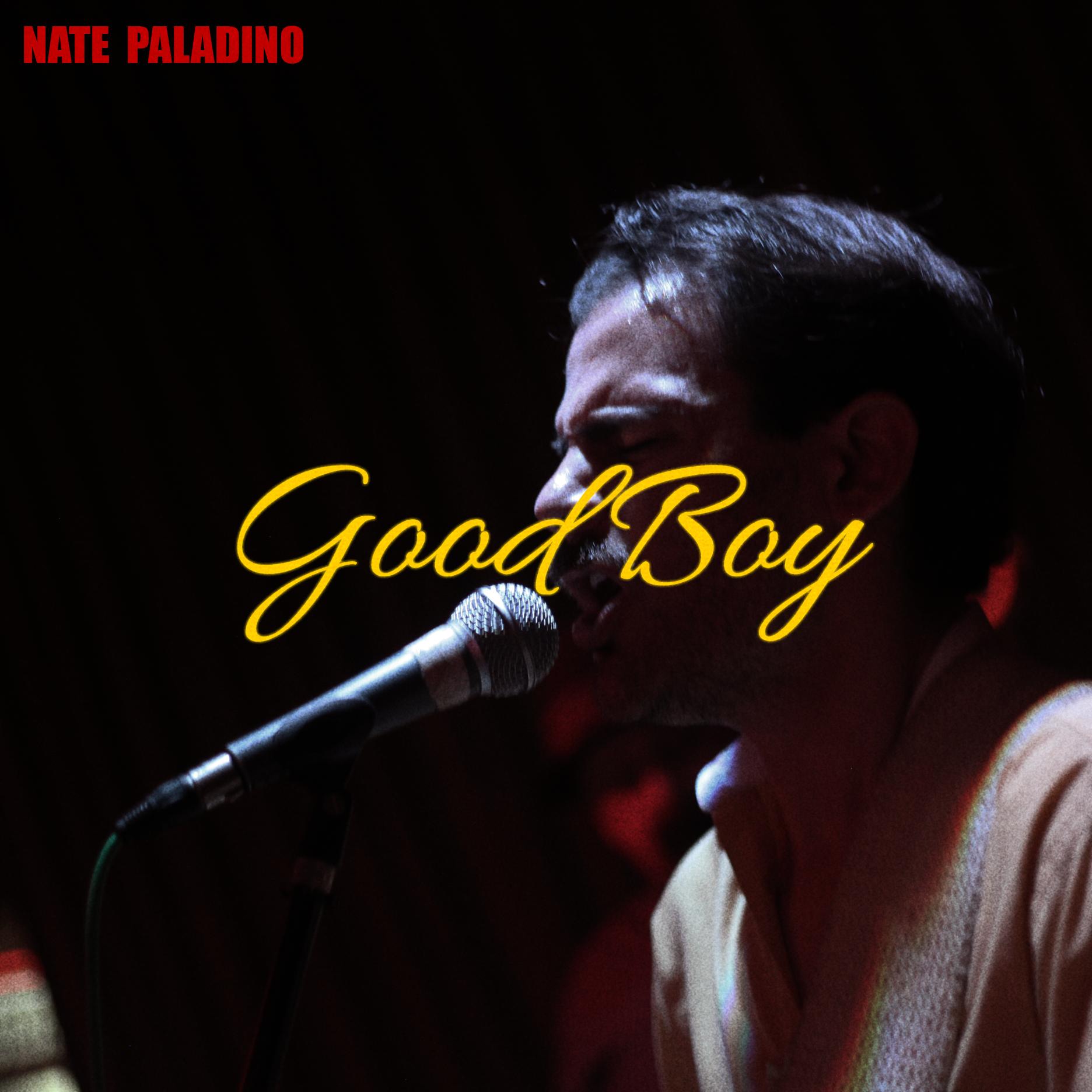 Nata Paladino Good Boy